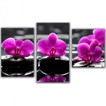 Topposters XH-201 Орхидея 55 х 94